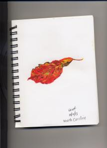 Another leaf