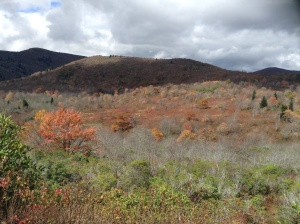 Graveyard Fields